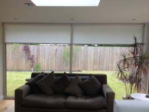 Modern style windows overlooking the garden with contemporary roller blinds